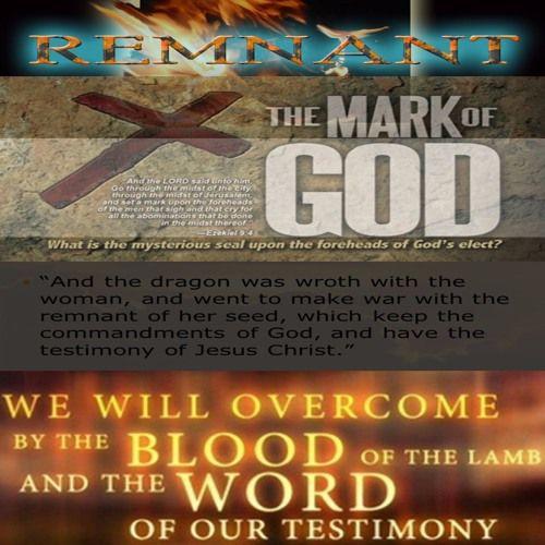 Psalm Chapter 79, Matthew Chapter 12:33-50, Daniel Chapter 7:9-12, Matthew Chapter 8:28-34, Matthew Chapter 9:1-8, John Chapter 6:26-29, John Chapter 10:22-30, Micah Chapter 5:9-15, Revelation Chapter