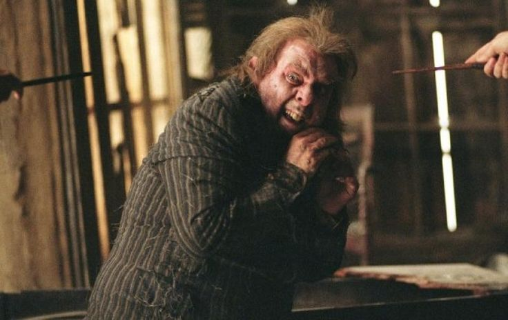 Pedro Pettigrew. -> 15 Fatos assustadores que você nunca percebeu em Harry Potter