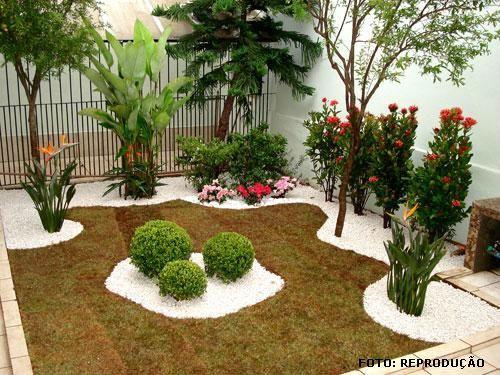 jardins com heliconias - Pesquisa Google