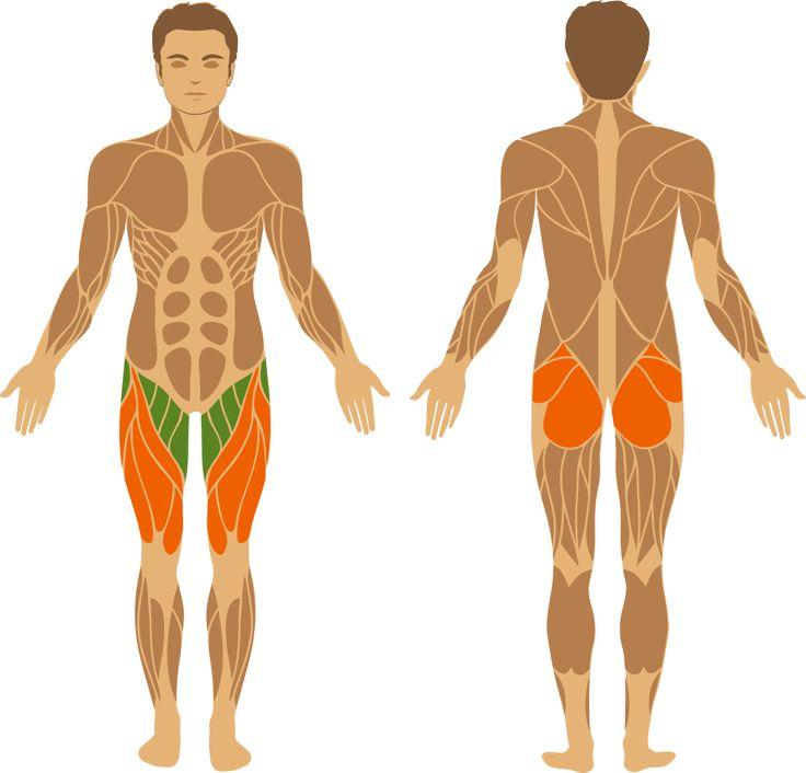 Per effettuare il sumo squat con kettlebell sullo step posiziona due step in base alla larghezza in quale riesci tenere larghe le gambe. I piedi sono girati verso fuori. Impugna il kettlebell dalla maniglia con tutte le due mani. Le mani rimangono flesse davanti a te in mezzo alle gambe per tutto il movimento. Contrai gli addominali e tieni la schiena dritta. Il movimento da eseguire è di flettere le ginocchia portando all'indietro il bacino, come se dovessi sederti su una sedia che si trova…