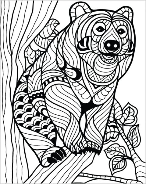 988 best zentangle dieren images on pinterest coloring Crazy animals coloring book