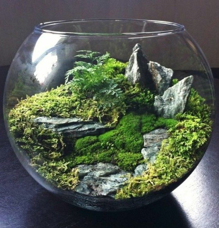 die besten 25 terrarium selber bauen ideen auf pinterest. Black Bedroom Furniture Sets. Home Design Ideas