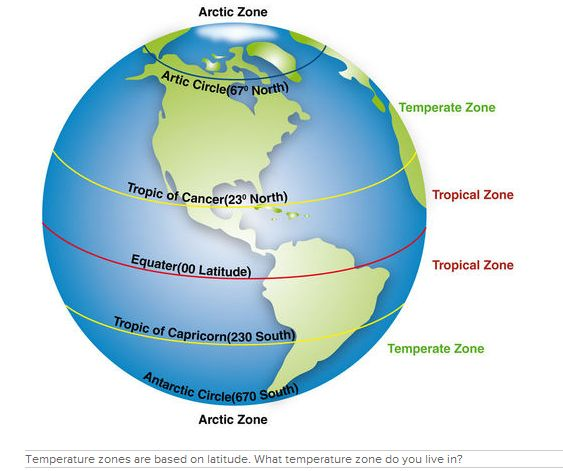 44 best images about BIO 112 Project: North American ...