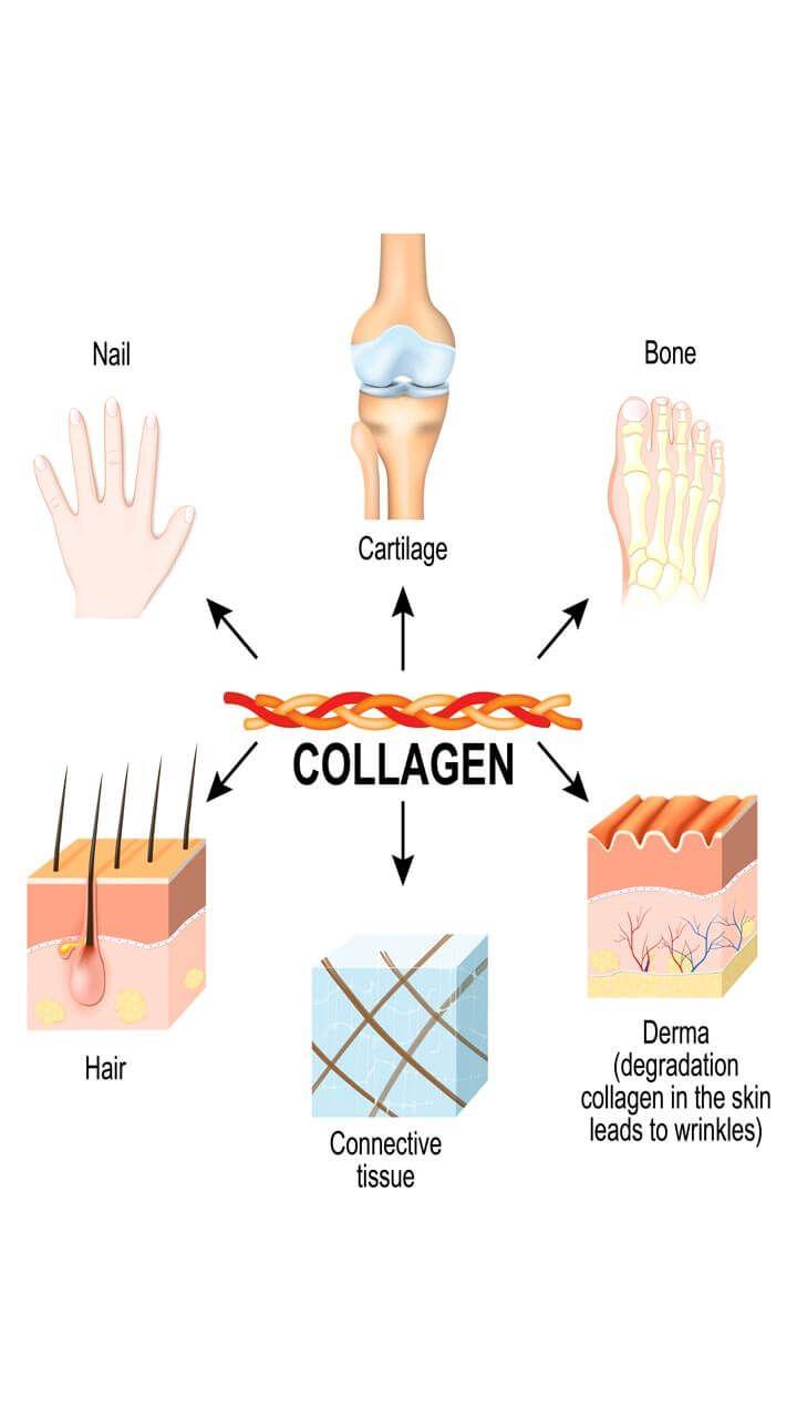 Collagen structure | Colageno