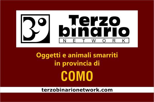 Oggetti e animali smarriti in provincia di Como