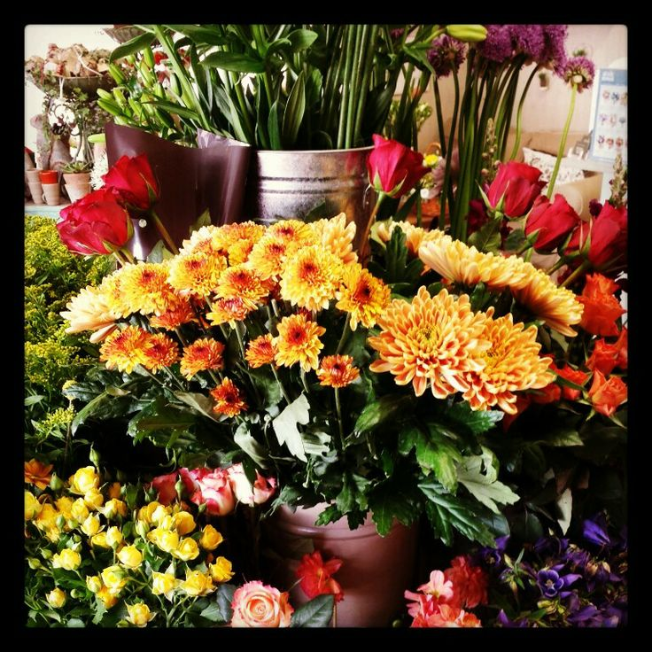 Gorgeous colours in Arcade Flowers this morning!