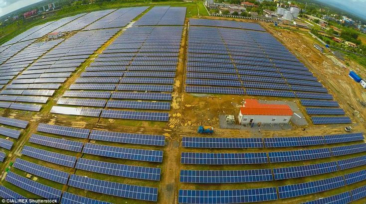 It was announced this week the 46,000 solar panels near the airport's cargo complex would make the airport 'absolutely power neutral'
