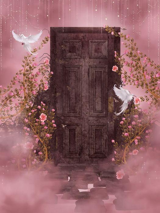Картинки анимашки двери