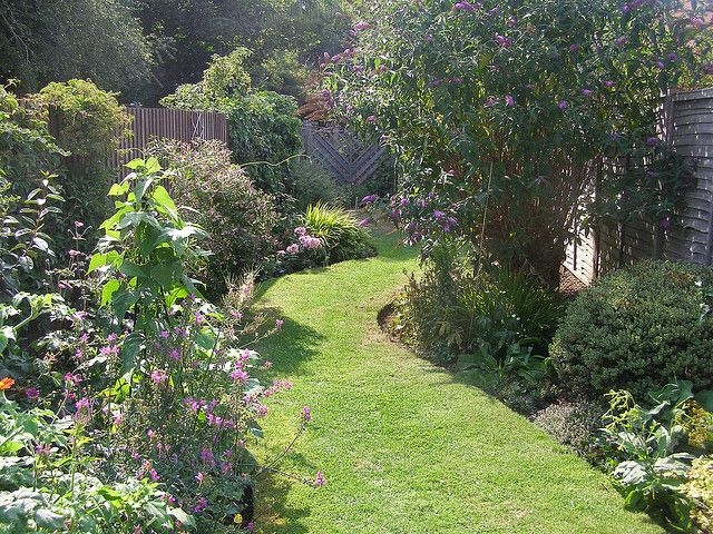 long thin garden    Winding lawn Or maybe the lawn on the side and a winding path