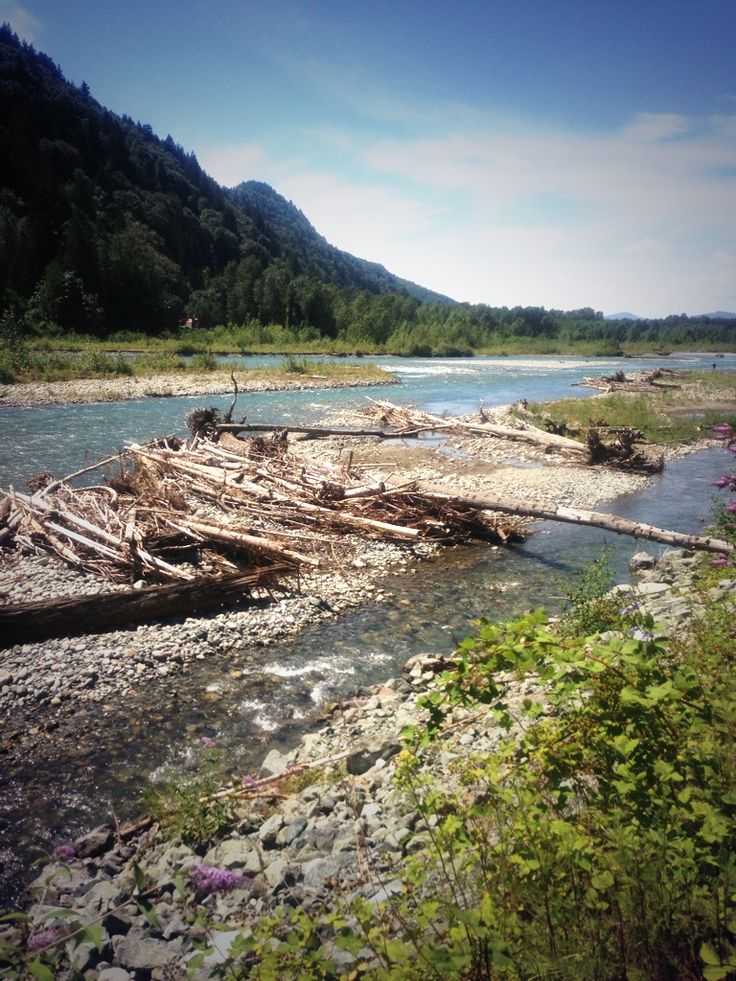 Vedder River Chilliwack BC