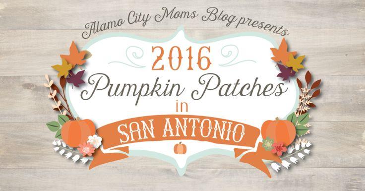 2016 Pumpkin Patches in San Antonio