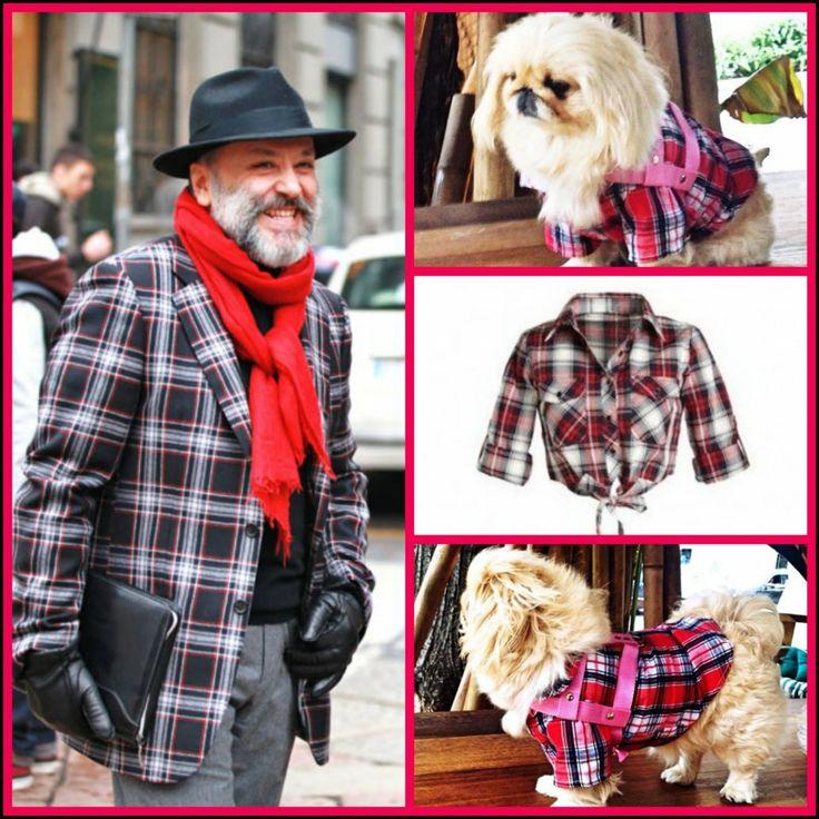 001 CHECKERED TRENDS by L'Officiel köpek minderi köpek yatakları köpek yatağı petshop köpek malzemeleri kopek kıyafetlerı köpek kıyafetleri kopek elbıselerı köpek elbiseleri kopek elbise köpek elbise dog clothes köpek modası kopek modası dog fashıon köpek için kıyafet kopek ıcın elbise köpek için elbise köpek paltosu köpek montu köpek ceketi köpek tişörtü KÖPEK KIYAFETİ KÖPEK ELBİSESİ KÖPEK ÜRÜNLERİ KÖPEK ÜRÜNÜ KÖPEK GİYİM www.kemique.com