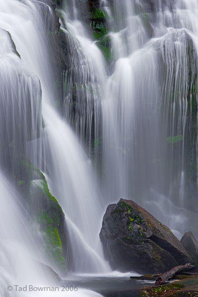 Cherokee National Forest, North Carolina; photo by Tad Bowman