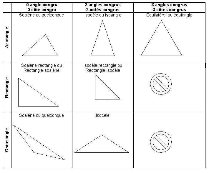 17 Best Images About 5th Grade Geometry Lapbook Project On
