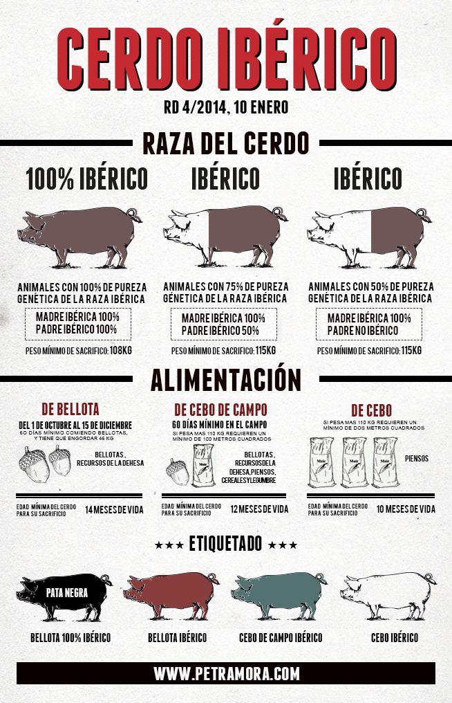 Infografía sobre normativa razas del cerdo ibérico