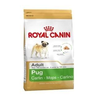 Royal Canin Pug Irk Carlin - Mops - Carlino Yetişkin Kuru Köpek Maması