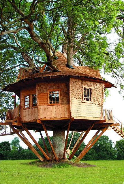 TREE HOUSE  a great example of what is possible with treehouse creativity.