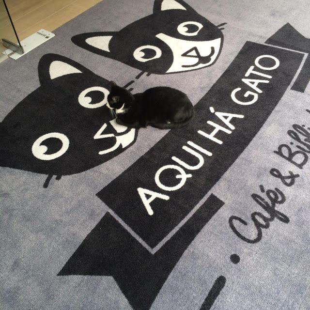 Café com biblioteca e gatos? Que bom! http://bit.ly/26gjdQ1