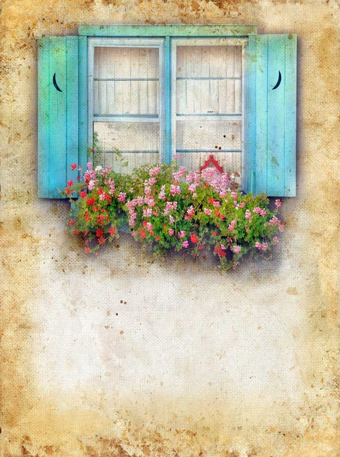 926 Flower Box Window Backdrop