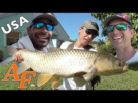 Catching Fish with Catchemall Fishing Monster Grass Carp his Moby Dick and pet Shamu feeding EP.383