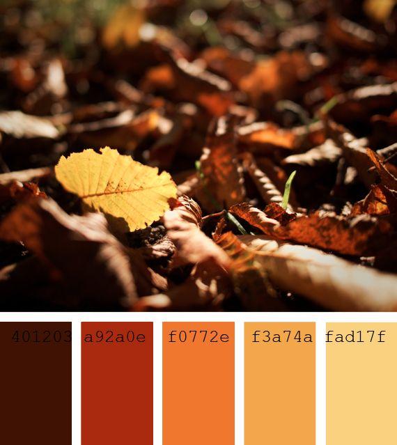 #Paleta de #colores #tostados #teja #ocre #hojas #otoño