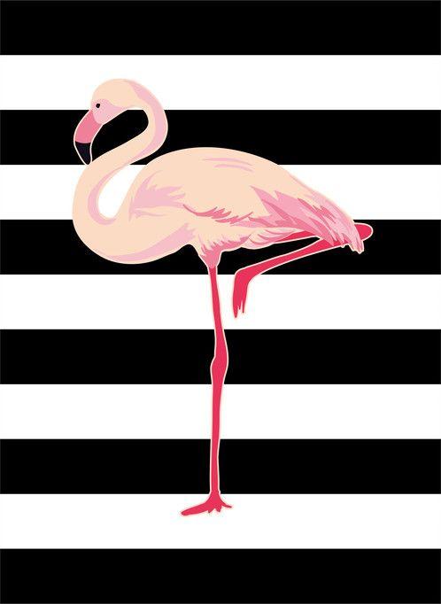Pôster flamingo; quadro de parede para decoração