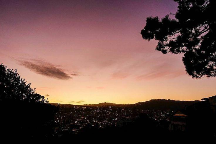 Photo taken a few weeks back, half way up Mount Victoria, #Wellington... 😎📷 …