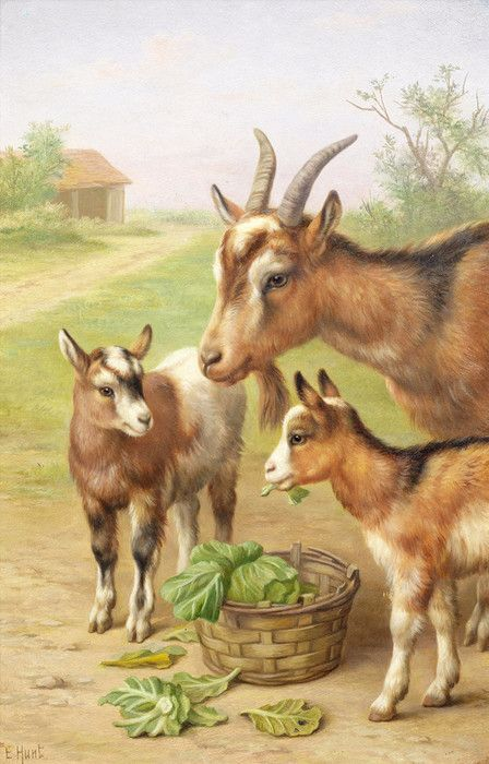 Goats in a Farmyard by Edgar Hunt   Art Posters