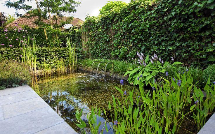 Kleine Moderne Tuin Met Natuurlijke Vijver En Waterspel