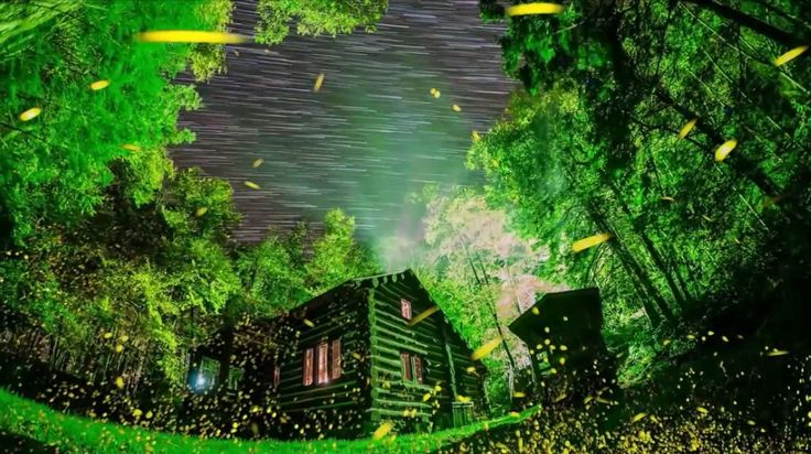 Бал светлячков в Национальном парке Грейт Смоки Маунтинс. США. Fireflies ball in the Great Smoky Mountains National Park. USA https://youtu.be/qeMCUjWxbzs