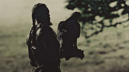 Ragnar and his crow. Vikings.