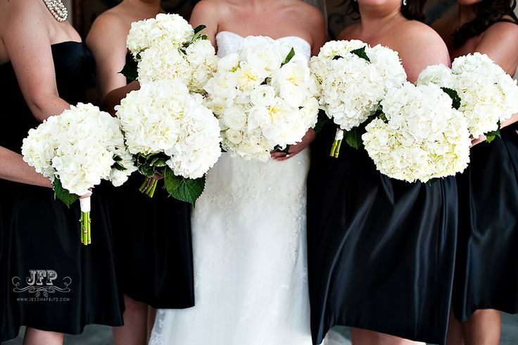 white peonies, white hydrangeas, white bridal bouquet, white wedding flowers