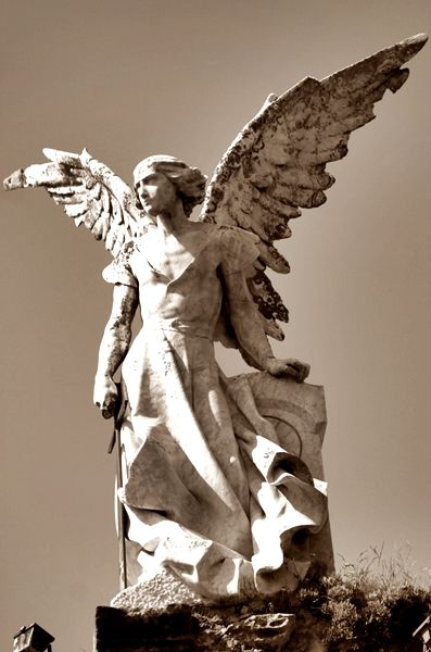 The Archangel Azrael  (Azrael might be one of the names of the Archangel of Death)  Great wings ¿angelote..?