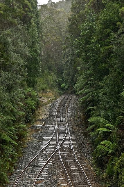 Rinadeena, West Coast Wilderness Railway, Tasmania.