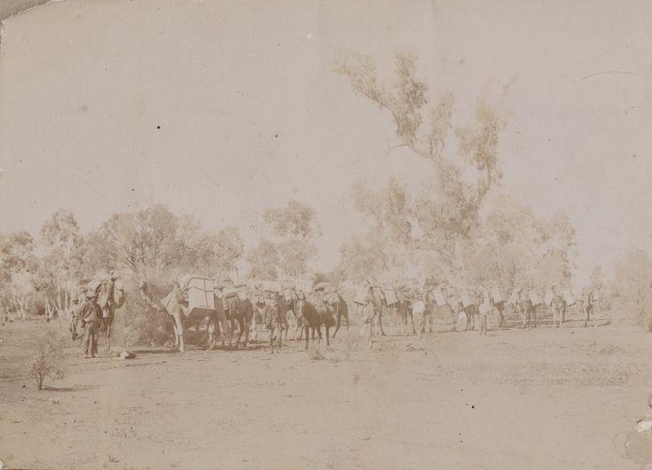 BA767/1: Locke Oil Expedition, 1922 http://encore.slwa.wa.gov.au/iii/encore/record/C__Rb1898396?lang=eng