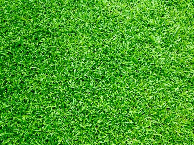Artificial Turf Supplier Artificial Turf Express is the number one artificial turf supplier in the San Francisco Bay Area. We are located in San Jose at 370 Umbarger Road. We specialize in carrying the highest quality
