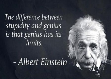 """The difference between stupidity and genius is that genius has its limits"" - Albert Einstein"