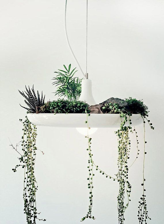 Etsy の Plant a garden pendant light by GlassandbrassCo, $165.00