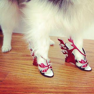 Dog wearing Prada Flame Shoe Christmas Ornaments