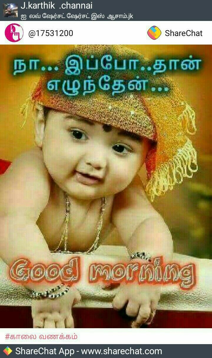Pin By Durai Raj Uc On Good Morning Good Morning Quotes Photo Album Quote Picture Quotes