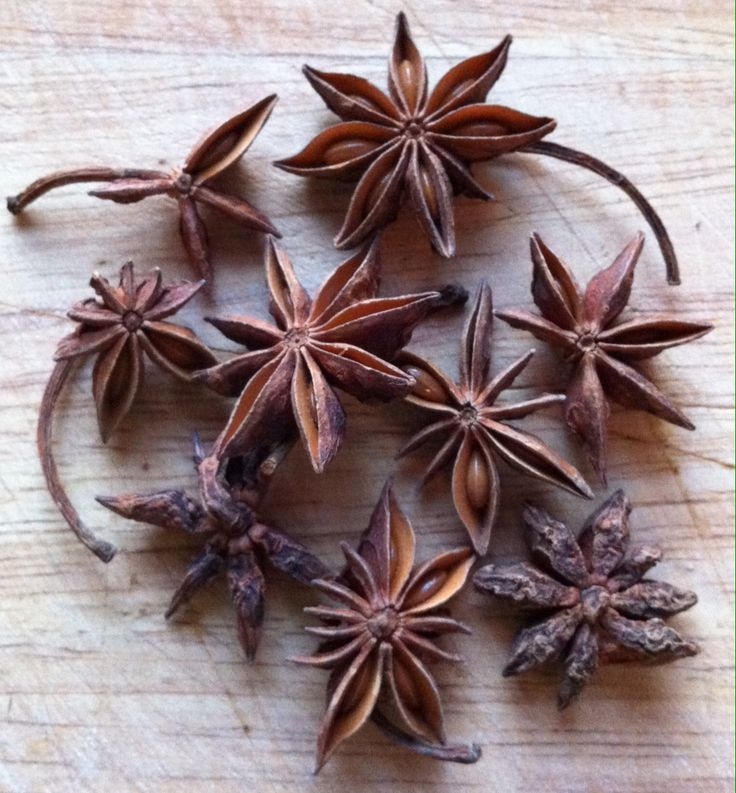 Beautiful star anise.