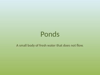 Pond habitat Power Point. Teaches characteristics of the habitat and the plants and animals that live there. Plus a virtual tour of the habitat!