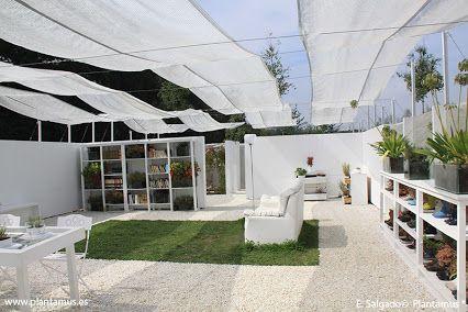 Plantamus, tu tienda de jardinería online: Google+