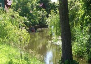 Spreewald: Aktiv die Natur genießen und entspannen