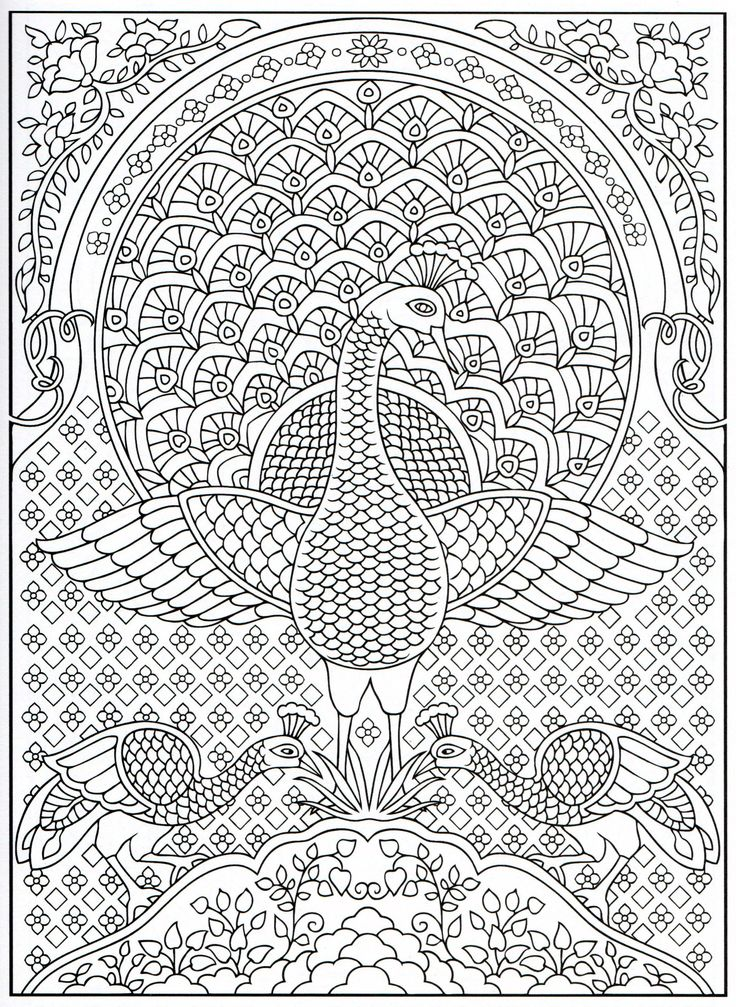 Peacock coloring page for adults 4 31 stencil patterns for Peacock crafts for adults