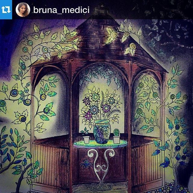 Instagram Post By Jardim Colorido Jardimcolorido