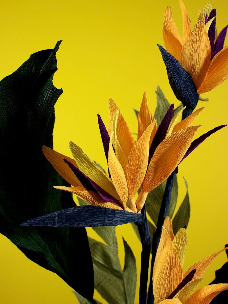 bird of paradise, handcrafted in crepe paper by Papetal