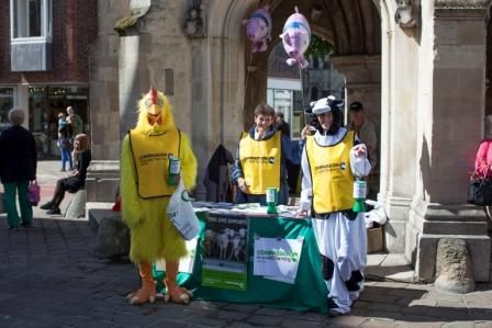 Our fab street collector, Annie, with her fab cow and chicken team raised over £400 in Chichester on Saturday – thanks Annie and co!