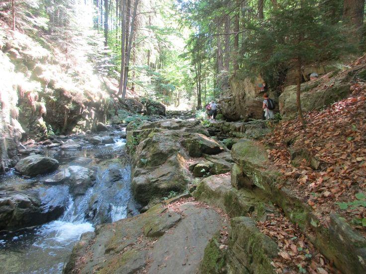 Údolí Doubravy - přírodní rezervace - Železné hory - kraj Vysočina