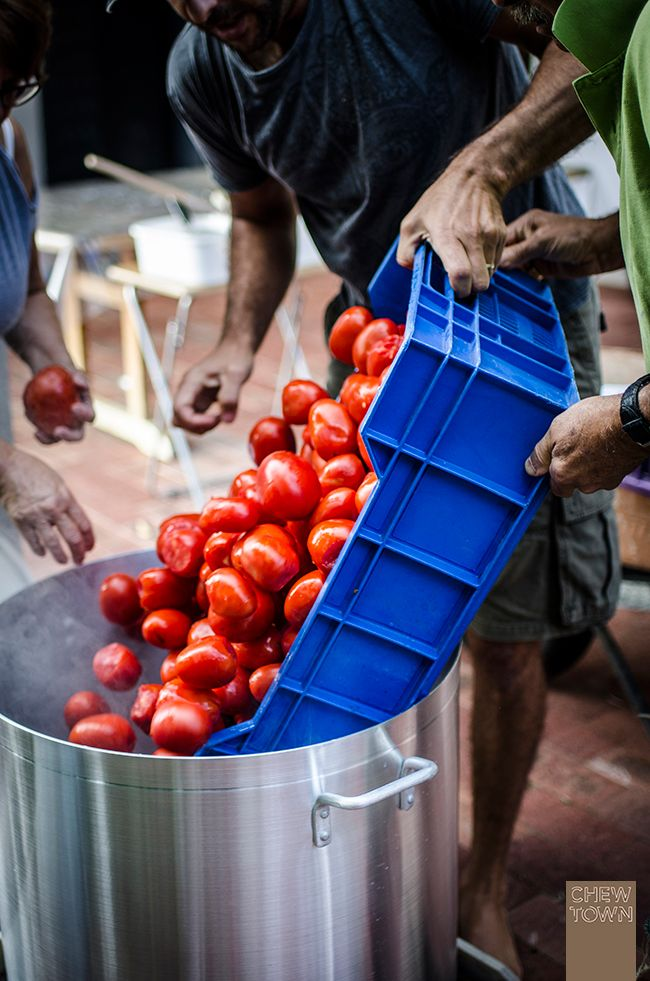 Tomato Sauce Day is when Italians families get together to make tomato passata for the year. Here's info and tips about the produce, equipment and process!